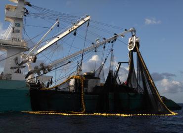 Le Parlement européen adopte mon rapport sur l'Accord de Pêche UE-Seychelles