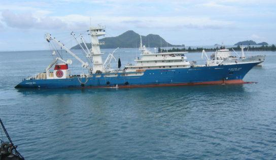 Caroline Roose désignée rapportrice sur l'accord de partenariat pour la pêche durable UE-Seychelles