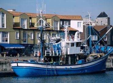 Secteur de la Pêche & Covid-19: résoudre la crise, penser la pêche de demain