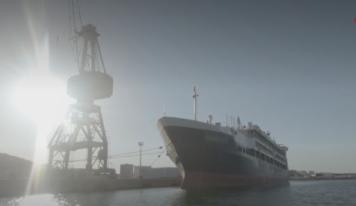 Transport des animaux : au port de Sète, la loi européenne n'est pas respectée.