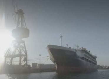Transport des animaux: au port de Sète, la loi européenne n'est pas respectée.