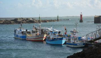 À la rencontre de pêcheurs normands et bretons, à 3 mois du Brexit
