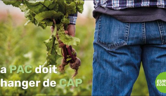 Politique agricole commune: une réforme mauvaise pour les paysans, les animaux et l'environnement.