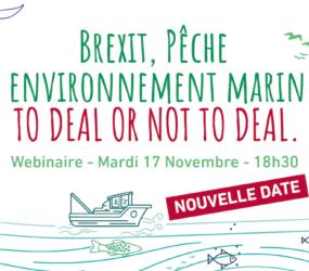 [NOUVELLE DATE webinaire] Brexit, pêche et environnement : to deal or not to deal.