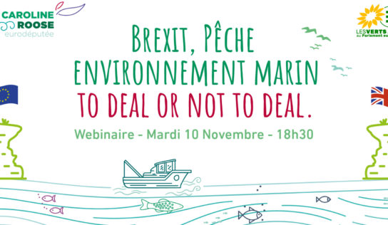 [Invitation Webinaire] Brexit, pêche et environnement : to deal or not to deal.
