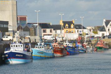 Quotas de pêche 2021 : les ministres européens échouent à lutter contre la surpêche.