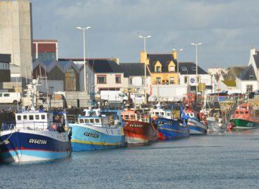 La révision du règlement de contrôle des pêches, un enjeu de taille pour une pêche durable et juste