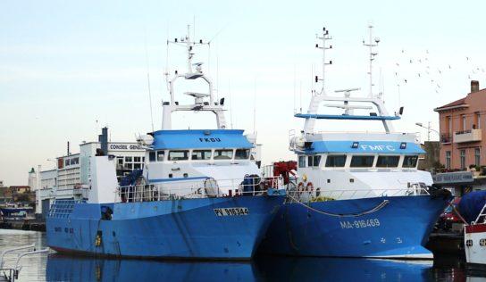 Thon rouge: le gouvernement français agit contre les petits pêcheurs