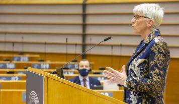 Rapport Roose: le Parlement européen demande une plus forte protection des océans !