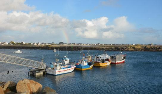 Brexit et pêche: un accord, mais lequel?