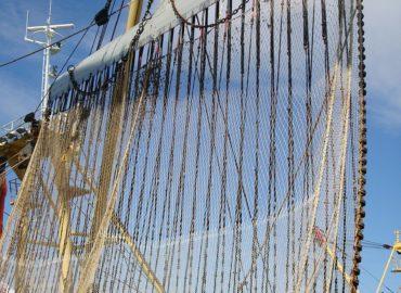 Pêche électrique, arrêt du juge européen «un soulagement pour les océans et nos pêcheurs»
