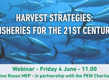 Communiqué: webinaire sur les stratégies de capture et l'avenir de la gestion de la pêche (replay)